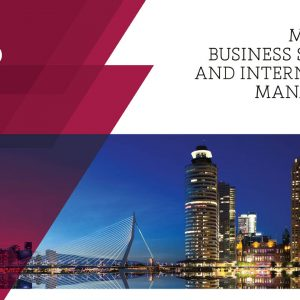 Master in Business Strategy and International Management